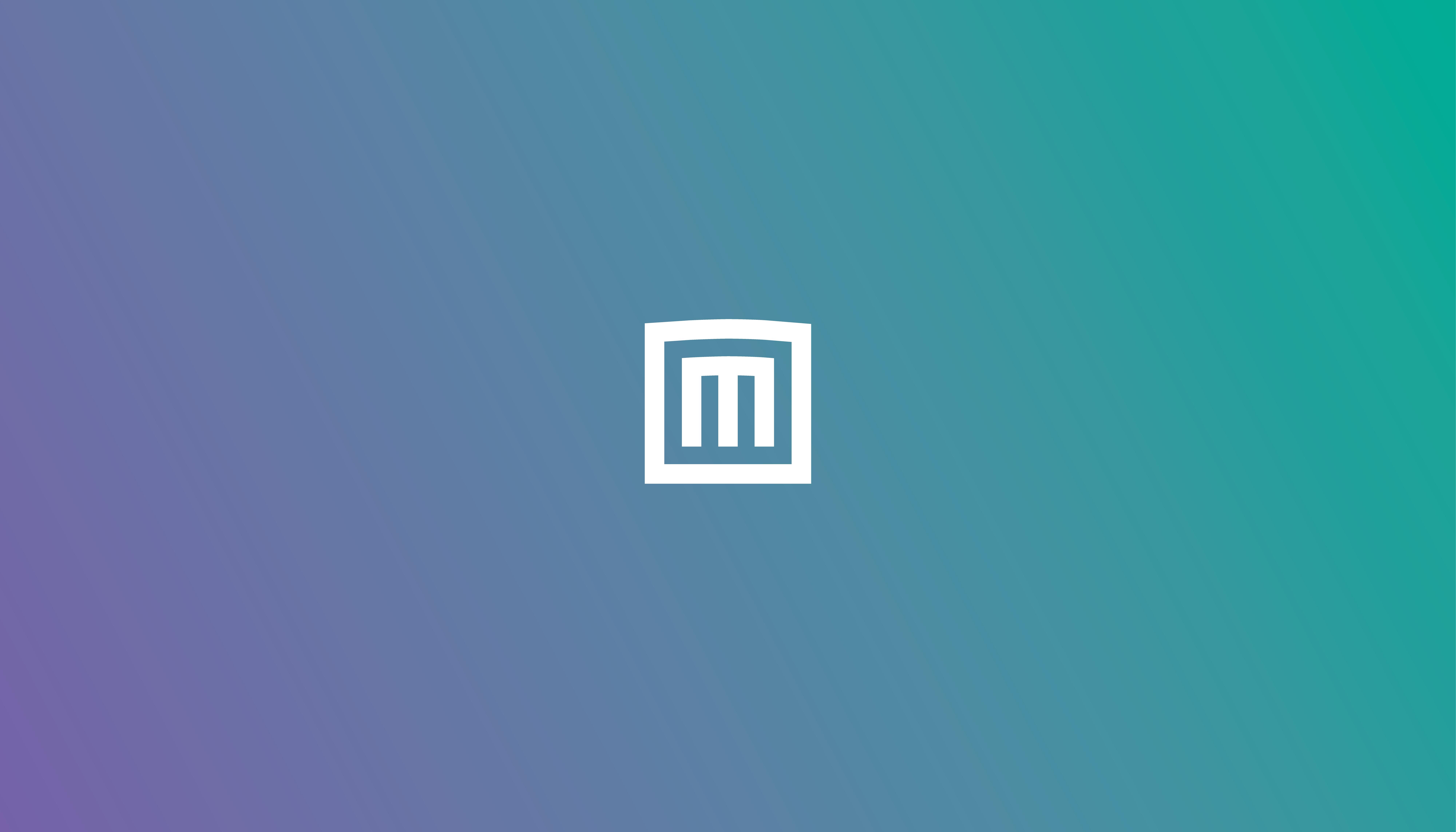 Marmoset_Hero